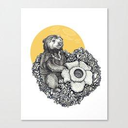 Honey Sun Bear Canvas Print