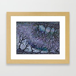 Olive Tree Fields Framed Art Print