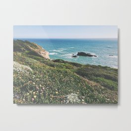 flower field on the coast Metal Print
