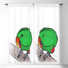Curious Eclectus Parrot Blackout Curtain