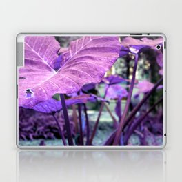 Beauty Of Natuer Laptop & iPad Skin