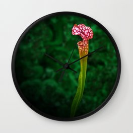 Pitcher Plant Rising Wall Clock