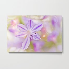Summer dance - macro  floral photography Metal Print