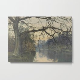 A Great Tree on a Riverbank - Garden William Fraser Metal Print