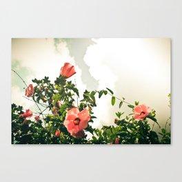 Grammy's Flowers Canvas Print