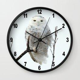 Snowy in the Wind (Snowy Owl) Wall Clock