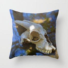 Goat Skull Throw Pillow