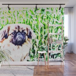 Lion Dog (white background) Wall Mural