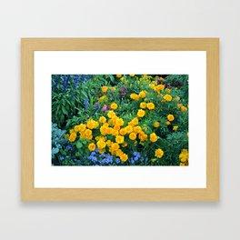 Nature Paradise Framed Art Print