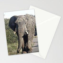 CArt Elephant 118 Stationery Cards