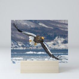 Stellar's Sea Eagle Flight Mini Art Print