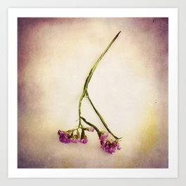 Abandoned Purple Flower Art Print