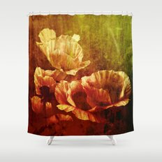 vintage poppies Shower Curtain