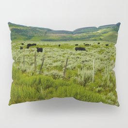 Colorado cattle ranch Pillow Sham