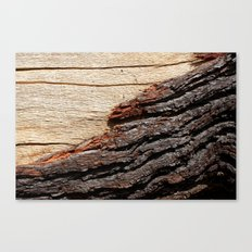 Wood Duo Canvas Print