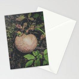 Woodland Fungi Stationery Cards