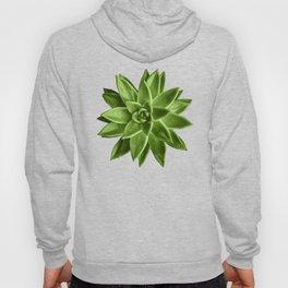 Greenery succulent Echeveria agavoides flower Hoody