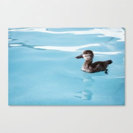 Chip The Duck Canvas Print