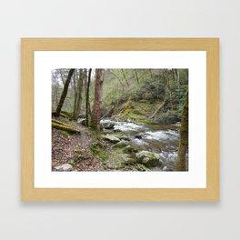 Laurel Creek Dreams Framed Art Print