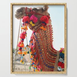 Boho Camel with Tassels and Pom Poms, in India Serving Tray