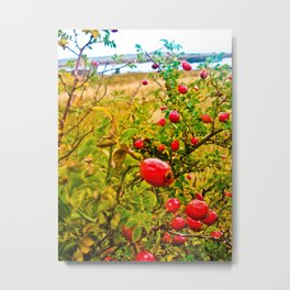 Nature red and green. Metal Print