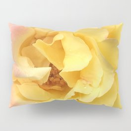 Summer Rose in Pink and Yellow Pillow Sham