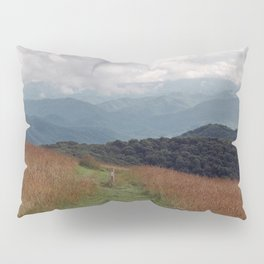 Max Patch Pillow Sham