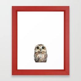 Little Owl Framed Art Print