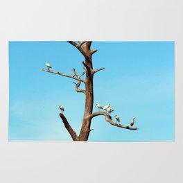 Ibises On Bare Tree Rug
