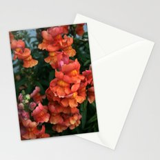 Snap, crackle & pop... Stationery Cards