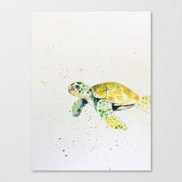 turtle watercolor art Canvas Print