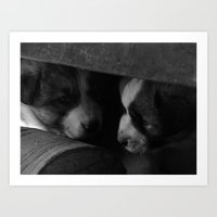 puppies Art Prints featuring Puppies  by Alexandra Sas