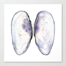 Thick Shelled River Mussel (Unio crassus), inner side Canvas Print