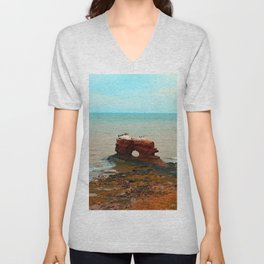 Unique Sandstone  Formation and the Birds Unisex V-Neck