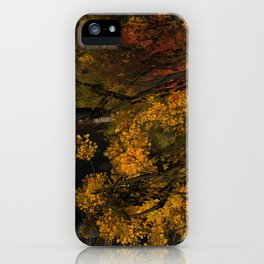 Autumn Leaves and Stream iPhone Case