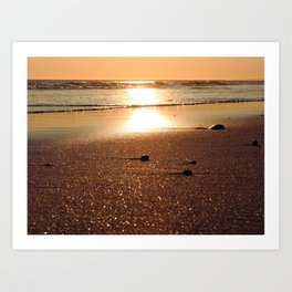 Sunset at Narragansett Beach Art Print