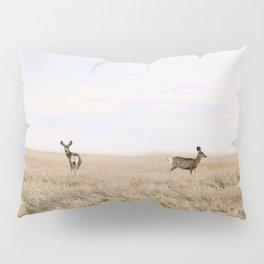 The Badlands 2 Pillow Sham