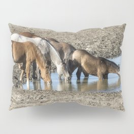 Thirst Pillow Sham