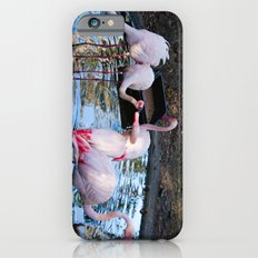 Just a little Kiss Slim Case iPhone 6s