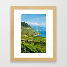 Vineyards of the UNESCO World Heritage Site of Lavaux Framed Art Print