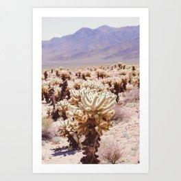 Chollo Cactus Garden - Joshua Tree Art Print