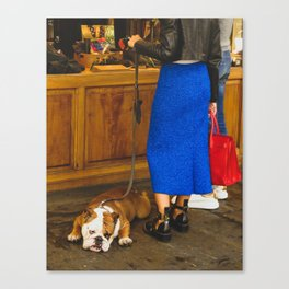 PHOTOGRAPHY - Bored dog Canvas Print