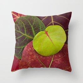 Florida Fall Throw Pillow