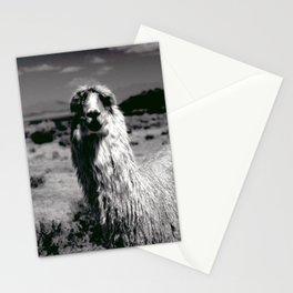 Peru Journey NO2 Stationery Cards