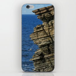 Sea Birds Off the Cliffs iPhone Skin