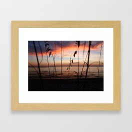 Sunset Sea Grass Framed Art Print