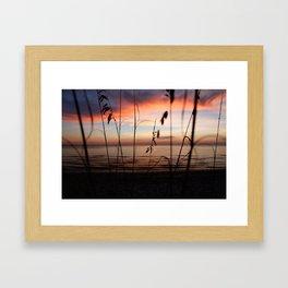 Sunset Sea Grass Framed Art Print