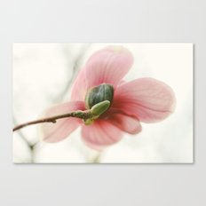 Portraits of Spring - I Canvas Print