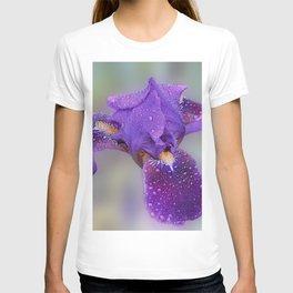 Beauty of Iris T-shirt
