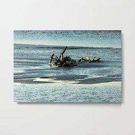 Driftwood In The Marsh Metal Print